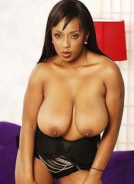 Thick, Big tittied black bitch gets boned!