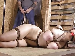 Hogtied And Clamped Free Bdsm Hd Porn Video 49 Xhamster