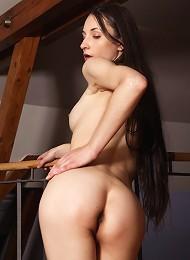 Elvira - Free Gallery