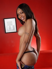 Exotical ebony transsexual stripping on the couch